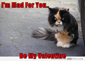 I'm Mad For You..  Be My Valentine