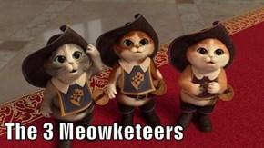 The 3 Meowketeers