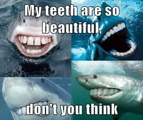 My teeth are so beautiful,  don't you think