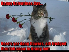 Happy Valentines Day...  Here's yer dang flowers, aih trudged thru teh snow tu brang em!
