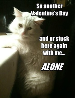 So another Valentine's Day