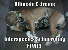 Ultimate Extreme   Interspecies Schnorgling FTW!!!
