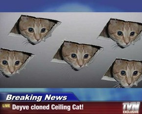 Breaking News - Deyve cloned Ceiling Cat!