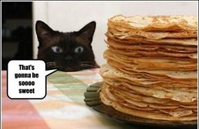 Basement Cat loves to eat souls