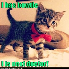 I has bowtie  I is next doctor!