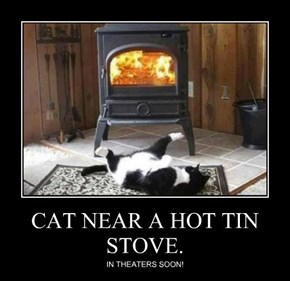 CAT NEAR A HOT TIN STOVE.