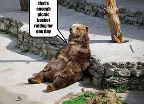 Yogi Bear gets exhausted