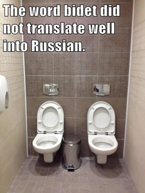 The word bidet did not translate well into Russian.