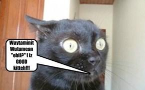 "Waytaminit Wutumean ""ebil?"" I iz GOOD  kitteh!!!"