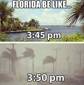 Florida, We Will Never Understand You