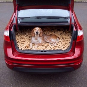 A Trunk Full of Heaven!