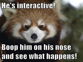 He's interactive!  Boop him on his nose and see what happens!