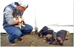 UPDATE: Olympic Medalist Gus Kenworthy Still Waiting to Take Rescued Puppies Home