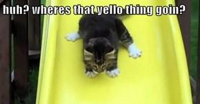 huh? wheres that yello thing goin?