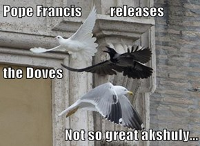 Pope Francis          releases the Doves Not so great akshuly...