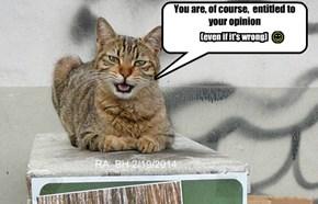 kitty wisdom #1