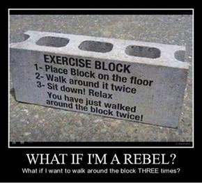 One Serious Rebel