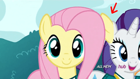 Extra Ear or Fluttershy is Broken and Dropping Pieces?