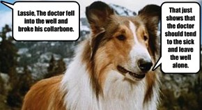 Lassie's Here all Night, Folks!