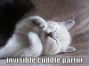 invisible cuddle partnr