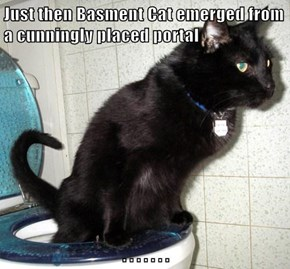 Just then Basment Cat emerged from a cunningly placed portal  . . . . . . .