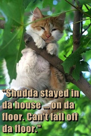 """Shudda stayed in da house ... on da floor. Can't fall off da floor."""