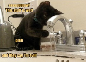 eeeuuuuuw!  This stuff is wet!      pleh   and they say I'm evil!