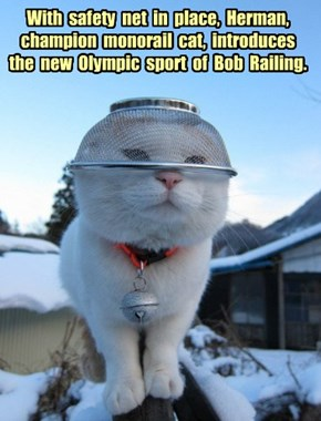 With  safety  net  in  place,  Herman, champion  monorail  cat,  introduces  the  new  Olympic  sport  of  Bob  Railing.
