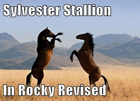 Sylvester Stallion   In Rocky Revised