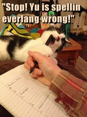 """Stop! Yu is spellin everfang wrong!"""