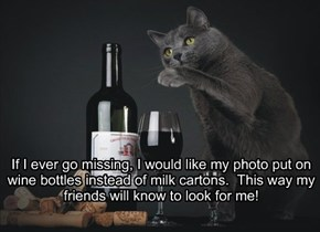 If I ever go missing, I would like my photo put on wine bottles instead of milk cartons.  This way my friends will know to look for me!