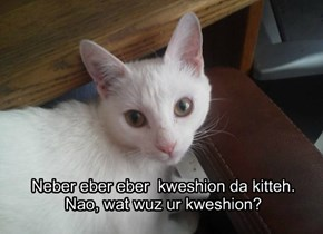 Neber eber eber  kweshion da kitteh. Nao, wat wuz ur kweshion?