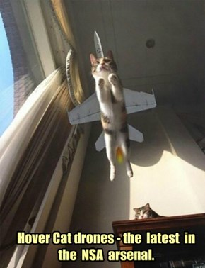 Hover Cat drones - the  latest  in  the  NSA  arsenal.