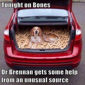 Tonight on Bones  Dr Brennan gets some help from an unusual source