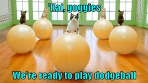 'Kai, goggies  We're ready to play dodgeball