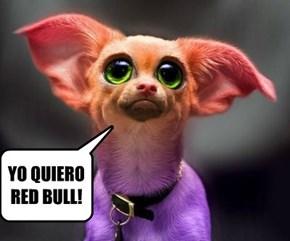 YO QUIERO RED BULL!
