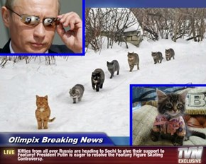 Olimpix Breaking News - Kitties from all over Russia are heading to Sochi to give their support to Foofany! President Putin is eager to resolve the Foofany Figure Skating Controversy.