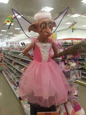 Master has given Dobby a dress!