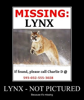LYNX - NOT PICTURED