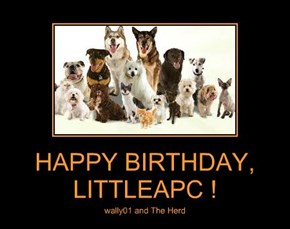 HAPPY BIRTHDAY, LITTLEAPC !