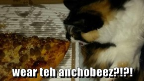 wear teh anchobeez?!?!