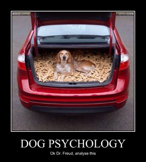 DOG PSYCHOLOGY