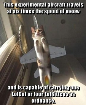 This experimental aircraft travels at six times the speed of meow  and is capable of carrying one LolCat or four LolKittens as ordnance.