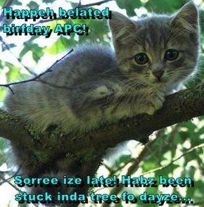 Happeh belated                  birfday APC!  Sorree ize late! Habz been stuck inda tree fo dayze...