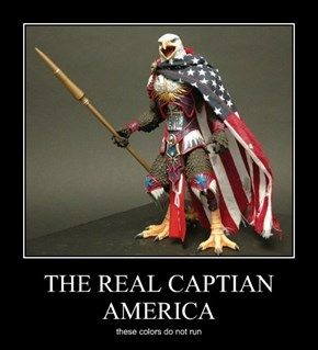 THE REAL CAPTIAN AMERICA