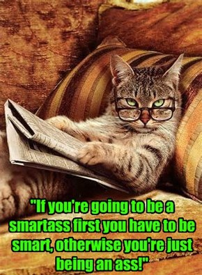 """If you're going to be a smartass first you have to be smart, otherwise you're just being an ass!"""
