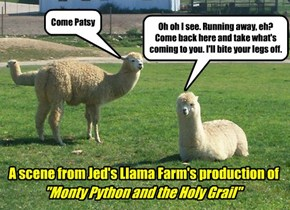 The Livestock Loves Monty Python