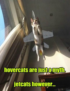 hovercats are just a myth.  jetcats however...