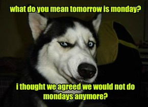 what do you mean tomorrow is monday?        i thought we agreed we would not do mondays anymore?