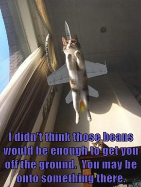 I didn't think those beans would be enough to get you off the ground.  You may be onto something there.